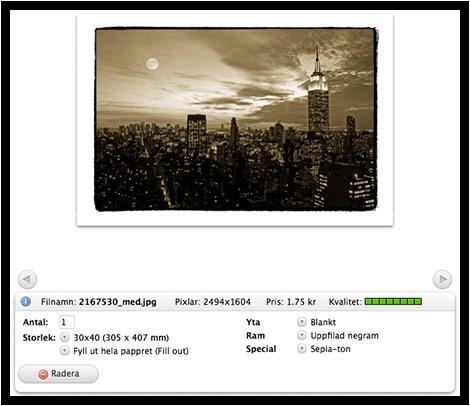 Guide Poster - Filter & Ramar
