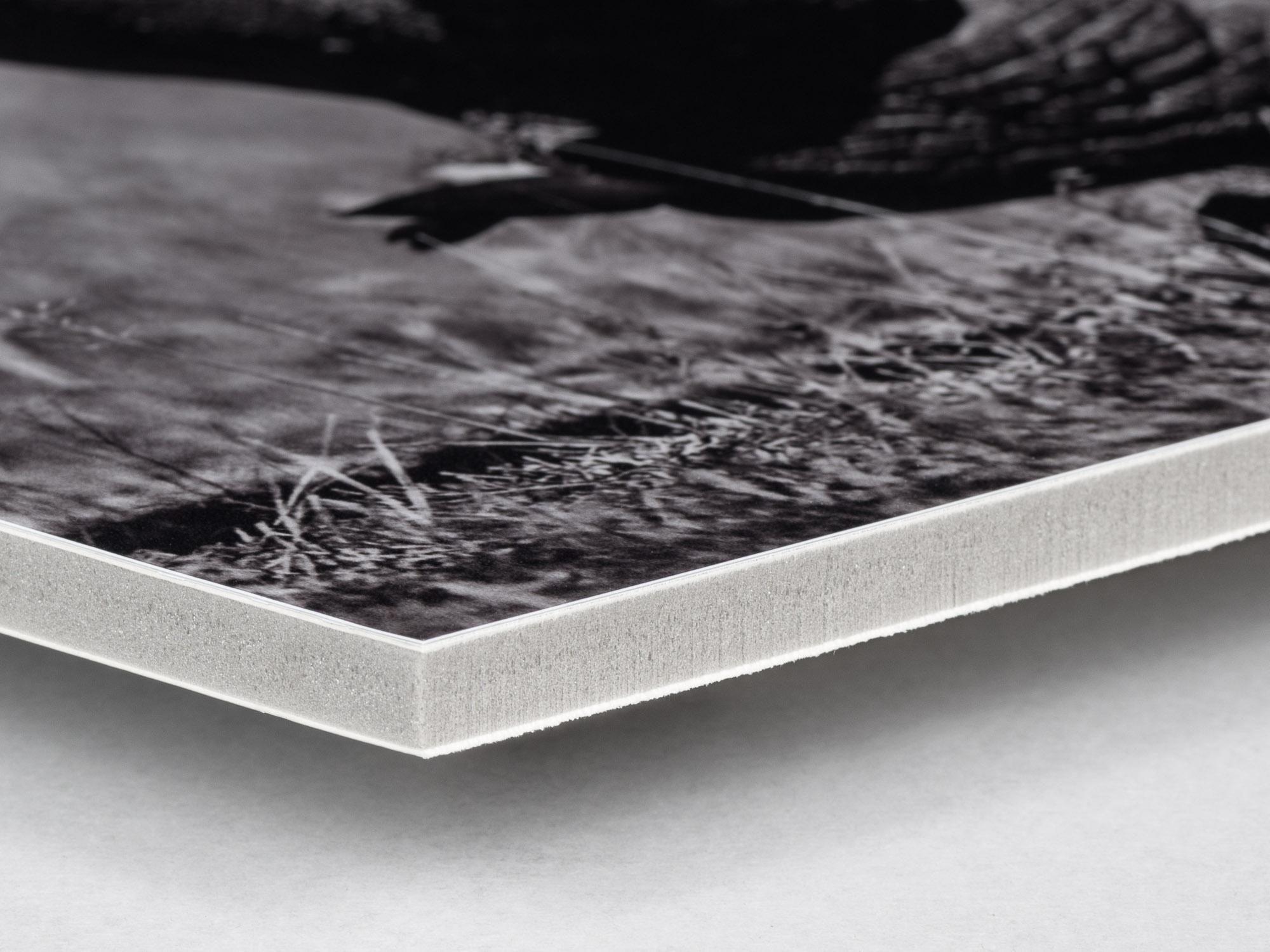 Bildmontering med fotokopia på Kapa 10mm