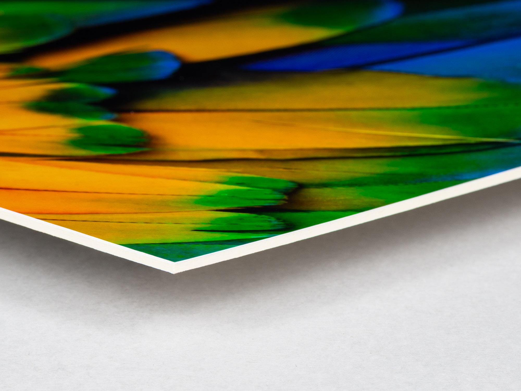 Bildmontering med fotokopia på kartong